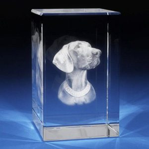 perro_cristal_rectangulo_mediano_web